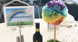 Sophie's Appeal Summer Ball 2019 rainbow theme